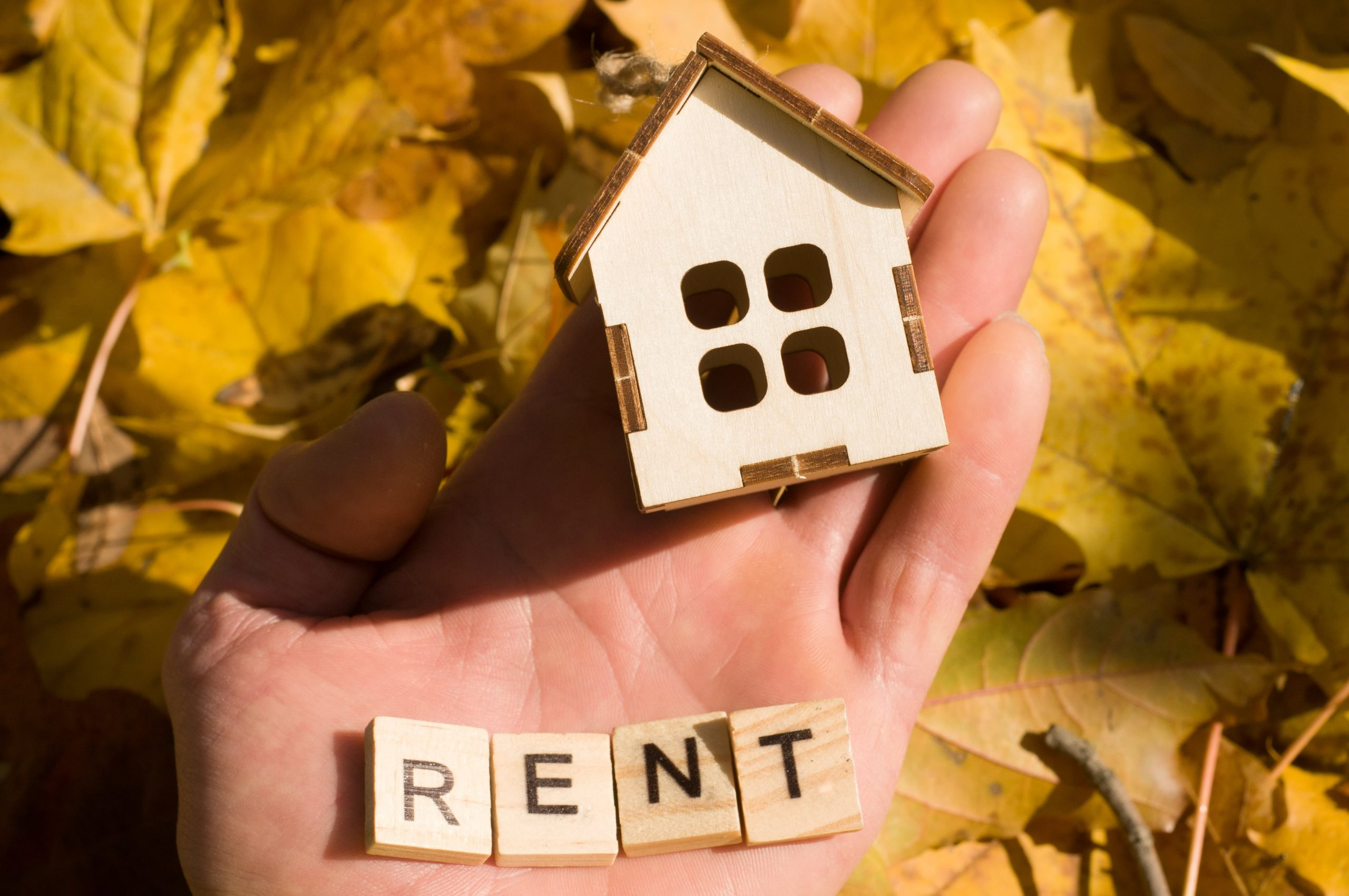 Renting vs. Buying a Home, the Pros and Cons to Consider